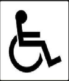 indicator persoane handicap